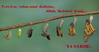 allah, kelebek, koza nedir, sabır nedir, sabrın sonu, selam, selamet, son, tırtıl, ya sabır, yol, yolun sonu, kuranda sabır, sabır ayetleri, ayetlerde sabır, sabır hadisler