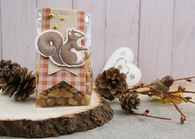 This adorable fall treat bag is perfect for those NUTso people who aren't into sweets.  Created using the Thankful Friends stamp & die bundle, and the Flannel Life background stamp, from Fun Stampers Journey.
