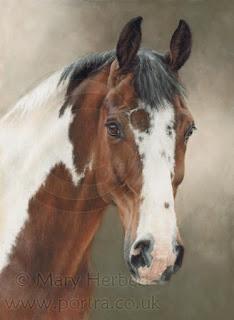 cuadros-caballos-dibujos