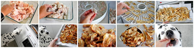 Steo-by-step instructions for making homemade dehydrated fish jerky dog treats