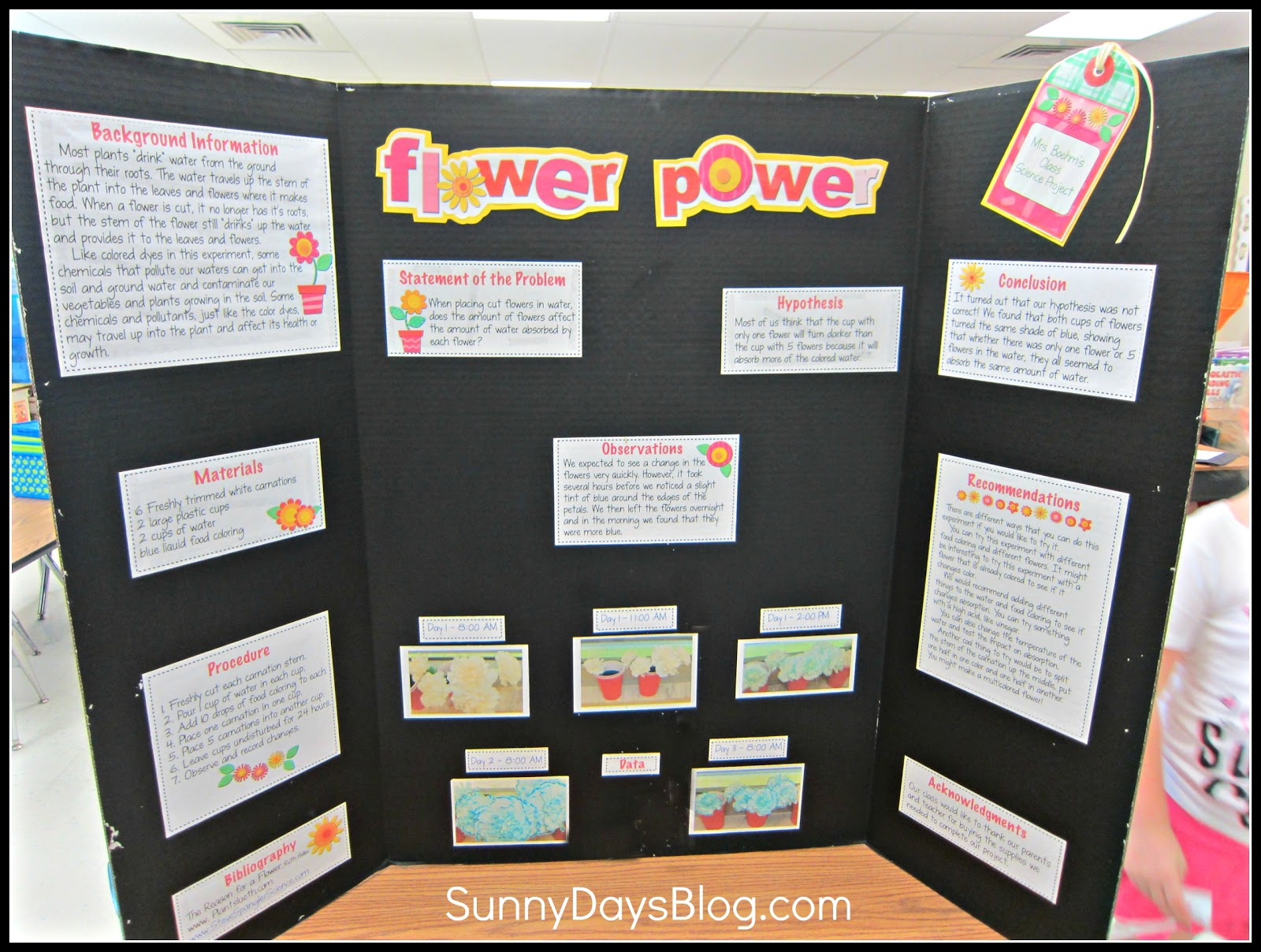 Science Fair Project Folders to Organize Research & Reports
