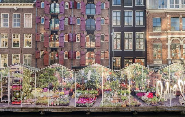 Visita ao Canal Singel e o Mercado de Flores de Amsterdã
