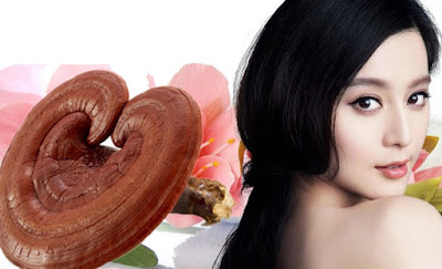 Nấm linh chi tác dụng tốt với mái tóc