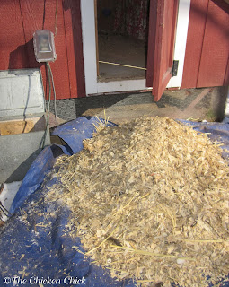 Pine shavings were a much more expensive, much less efficient chicken coop litter choice than sand