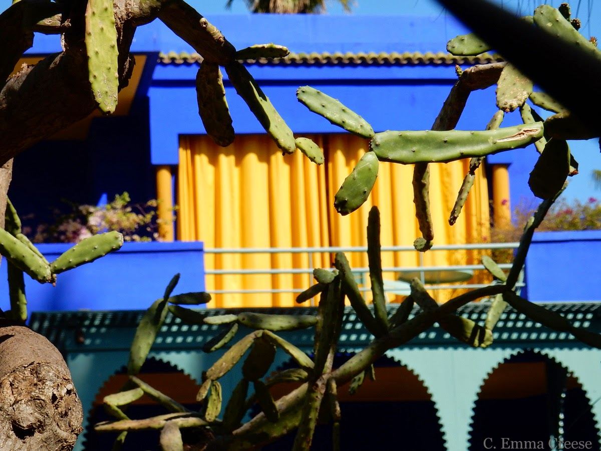 Yves St Laurent Garden Marrakesh Adventures of a London Kiwi