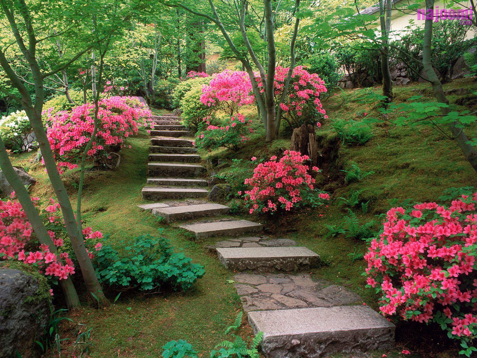 Beautiful gardens - Wonderful on Beautiful Backyard  id=39212