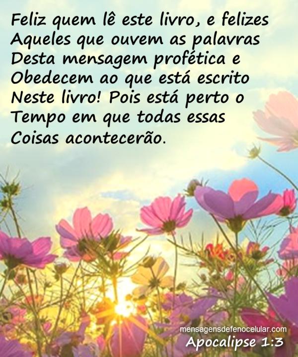 Muito Palavras De Felicidade BQ78