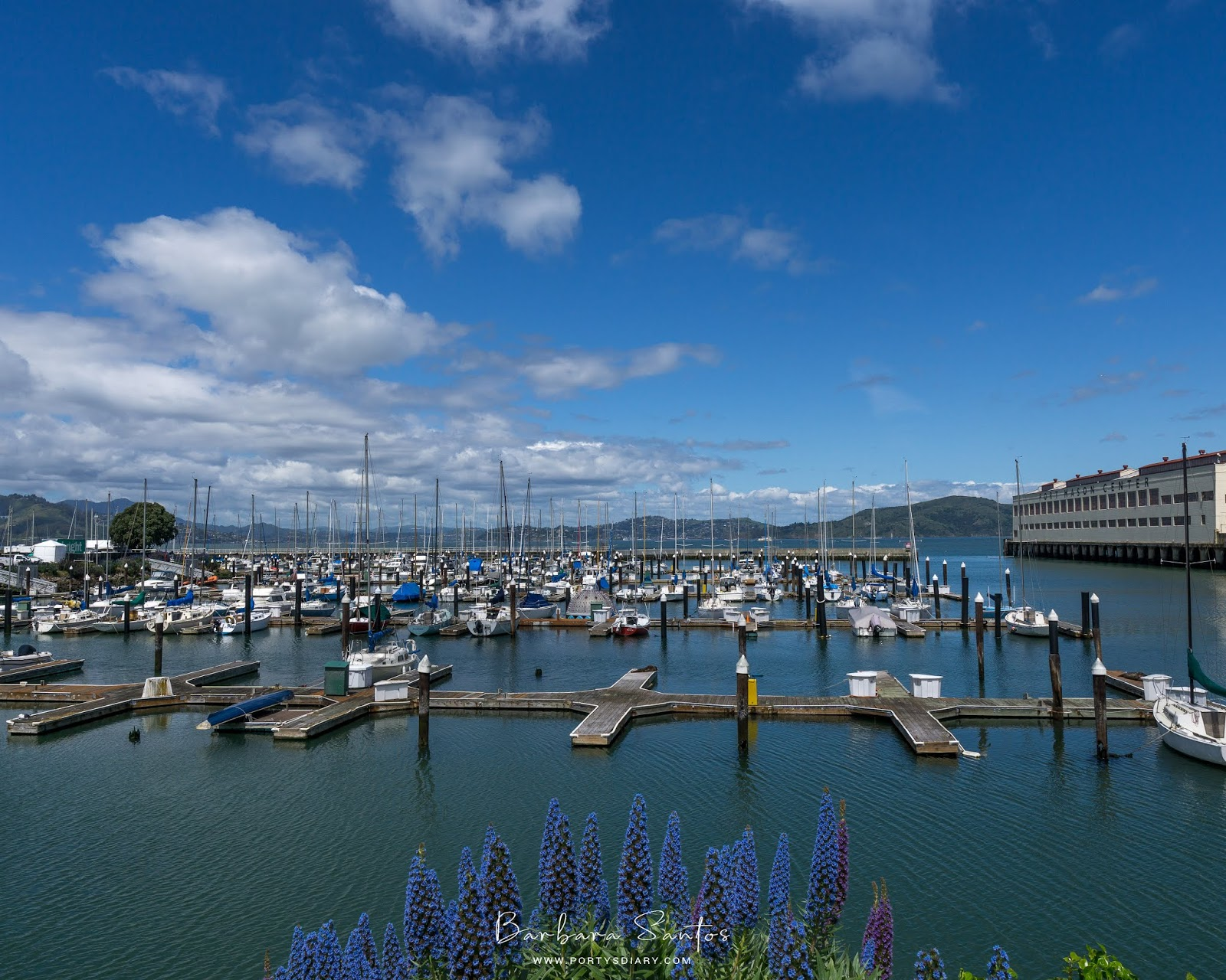 Marina - Travel - A week in San Francisco.