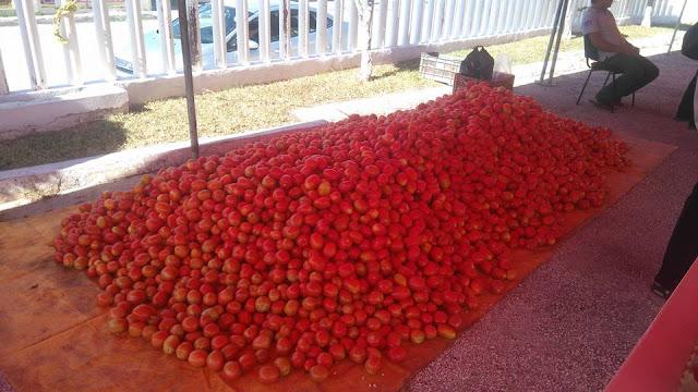 Agricultor mexicano vende el kilo de jitomate en 5 pesos, sin intermediarios DIFUNDE!!!.