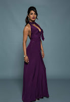 Priyanka Chopra in Mesmerizing Purple Backless Deep neck Gown 29).jpg