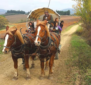 Horse and wagon excursion in Tuscany