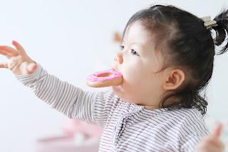 sillichews pink donuts