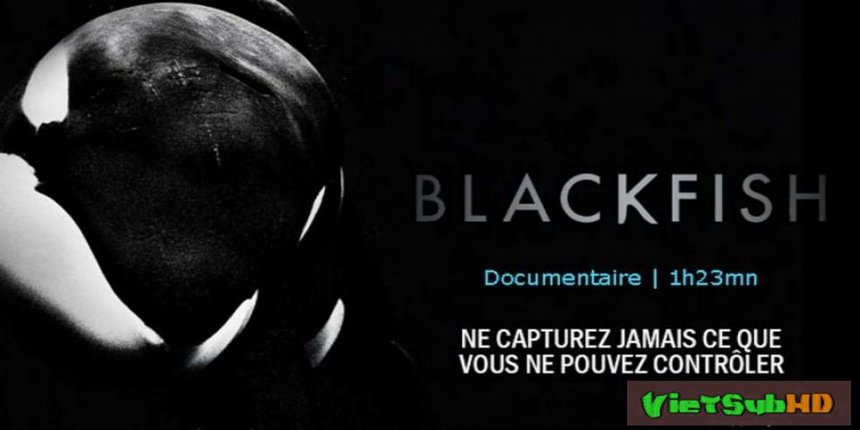 Phim Cá Đen VietSub HD | Blackfish 2013