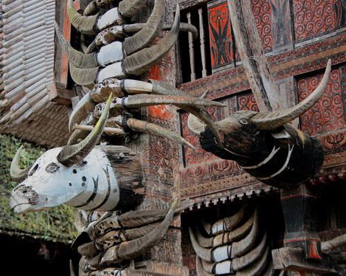 Tinuku Travel Tongkonan house in Pallawa village, beautiful old architecture and ornament genuine Tana Toraja culture