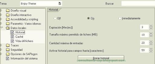 Historial SAP - Consultoria-sap.com