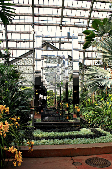 The tropical palm room of the Garfield Park Conservatory in Chicago.