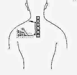 Fait mal le cou de la droite par derrière et tourne la tête