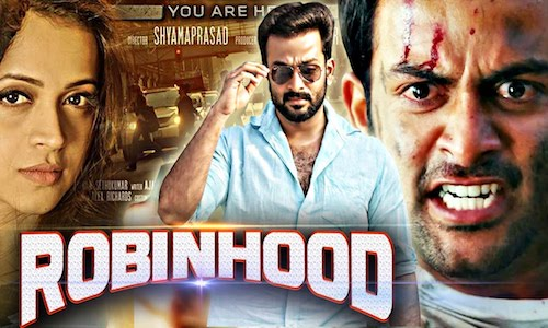 Robinhood 2017 Hindi Dubbed 480p HDRip 300mb
