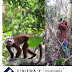 Curso teórico práctico en manejo y conservación de los recursos naturales
