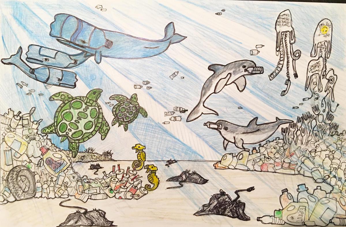 Mcbrooklyn vote for ny aquarium 39 s new murals for Aquarium decoratif mural