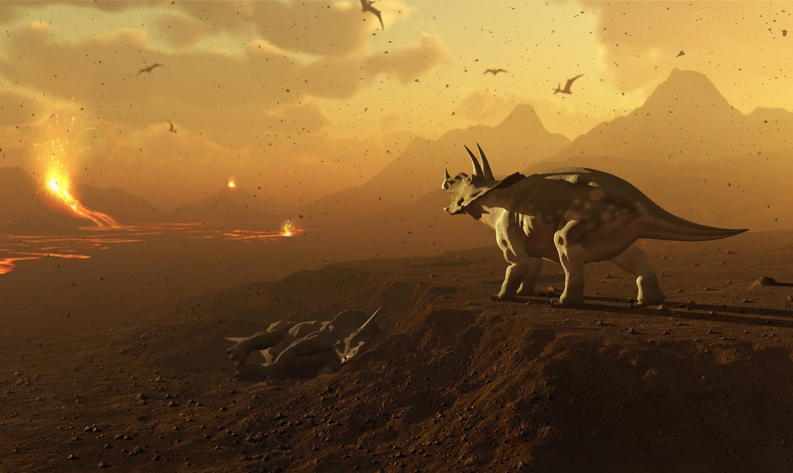 dinosaur extinction essay Extinction of dinosaurs by jenn collins, meghan mccurdy, & jen bayer questions to consider name the theories outlining the dinosaur extinction how long ago did the asteroid hit the earth.