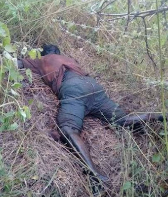 Homem é encontrado morto nas proximidades de Luzilândia