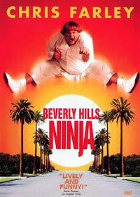 Download Filme Um Ninja da Pesada – DVDRip AVI Dual Áudio