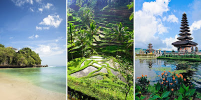 paysage naturel de Bali