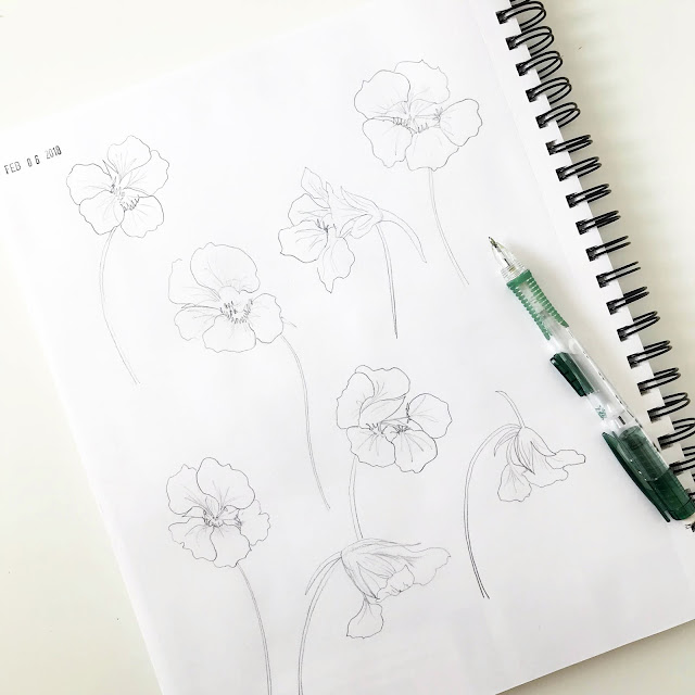 sketchbooks, drawing, pencil sketches, nasturtiums, Anne Butera, My Giant Strawberry