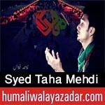 http://www.humaliwalayazadar.com/2016/06/syed-taha-mehdi-nohay-2013-to-2017.html