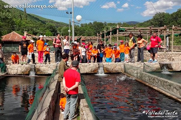 Centro de reproducción de salmónidos. Valle del Jerte