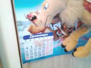 Kamila, camel, Christmas,