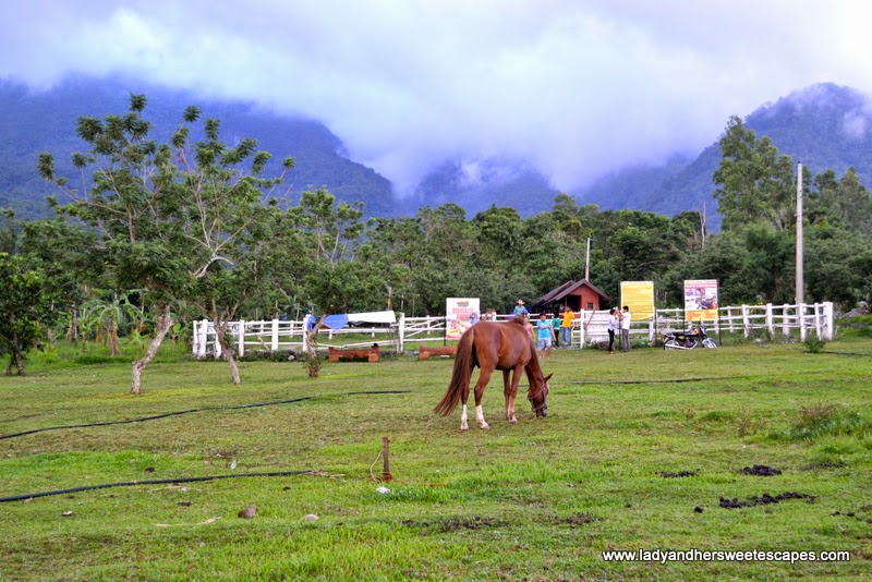 horseback riding at Campuestohan Highland Resort