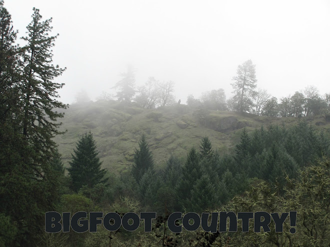 Bigfoot Ballyhoo