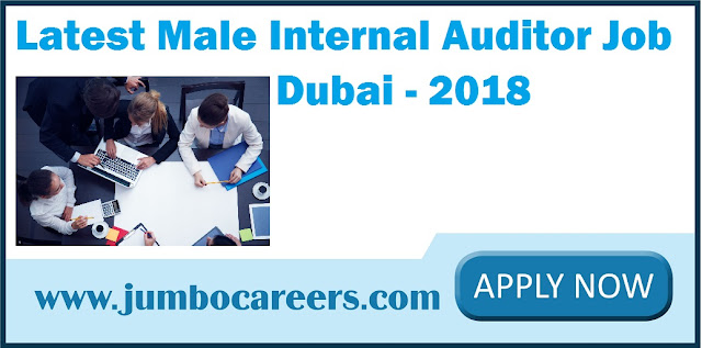 Internal Auditor Job