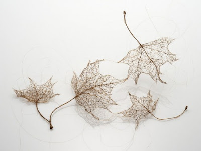 Unusual Designs and Products Created with Hair (15) 15