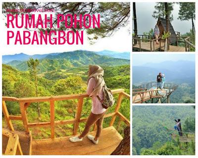 Rumah Pohon Pabangbon Leuwiliang: Info Rute Lokasi dan Harga Tiket Masuk