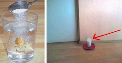 شاهدو... ضع كوب زجاجي من الملح والخل في بيتك ولاحظ نتائج لا تصدق   في غضون 24 ساعة !