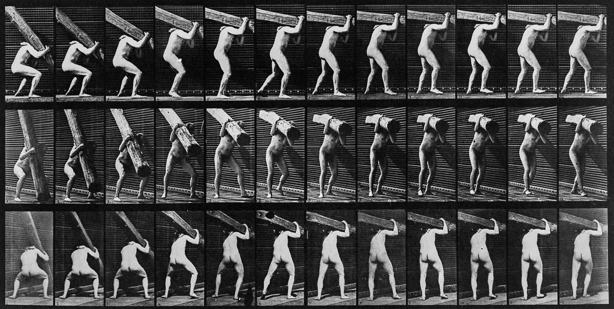 Ξωτικό: Οι μελέτες για την κίνηση του Μάιμπριτζ: Μια απλή ερώτηση ...