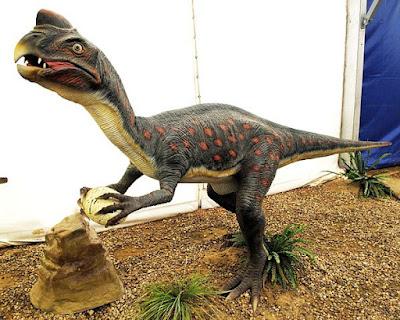 Oviraptor | facts | size