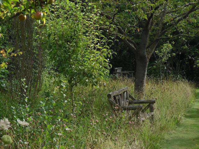 ławka w sadzie