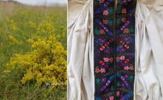 buchet sanziene si ie model broderie tinutul padurenilor, Transilvania, wild flower bouquet