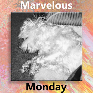#MarvelousMonday, On My Kindle Book Reviews, Lexi, TBR, currently reading