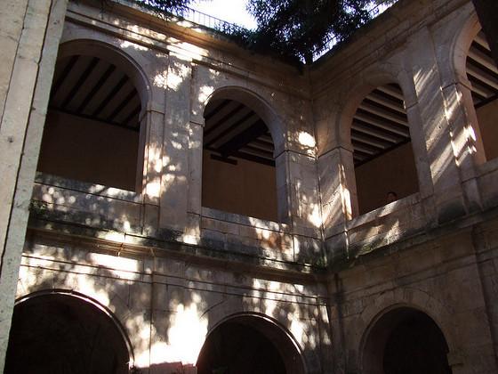 imagen_pedro_arlanza_burgos_monasterio_ruinas_romanico_claustro