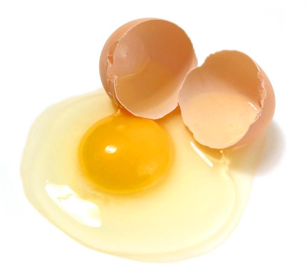 Khasiat Putih Telur Ayam Kampung Bagi Kesehatan