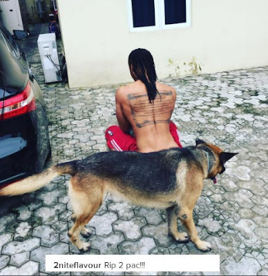 "Flavour's favourite dog ""2pac"" is dead"