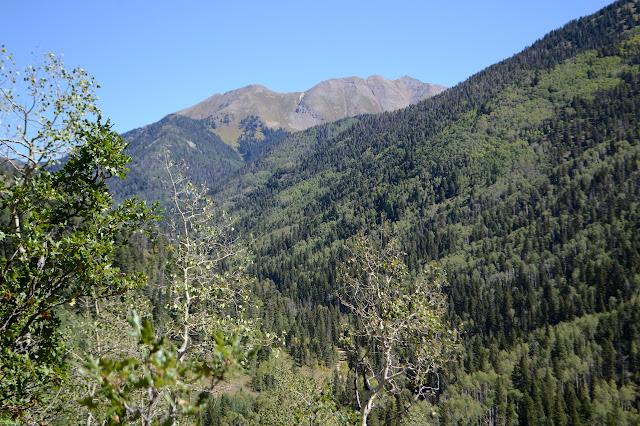 Lewis Mountain
