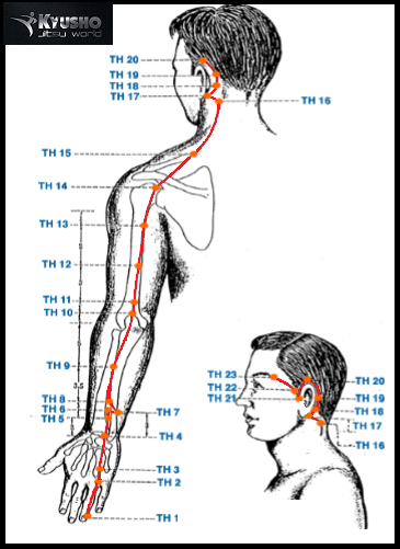 Martial arts - Pressure points: 7. Triple Warmer 11 (TW-11)