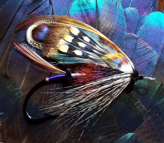 Wholesale Fly Fishing Flies: Penguin & Fish: Artist: Fishing Flies By Claudio D'Angelo