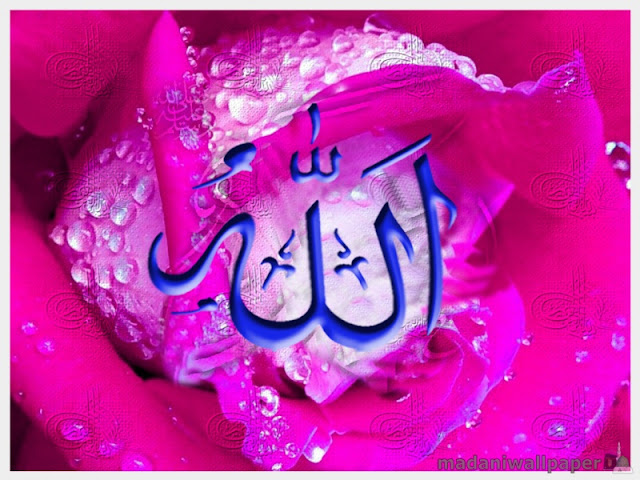 Name of Allah Wallpaper | 3D Wallpaper | Nature Wallpaper ...
